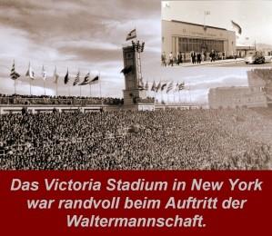 Viktoria Stadium New York